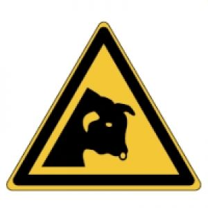 ISO Safety Sign - Beware of bull